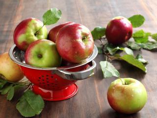 обои Чаша со свежими садовыми яблоками фото