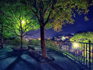 обои Лавочка у дерeвьев с обзором на ночной городок фото