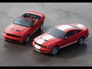 обои Ford Shelby GT500 фото