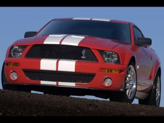 обои New Ford Shelby фото