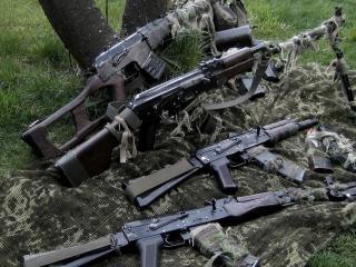 обои Под дерeвом арсенал оружия фото