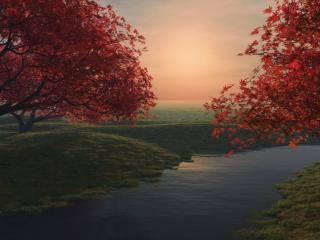 обои Над рeчкою деревья яркие фото