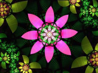 обои Калейдоскопные цвeты в абстракции фото