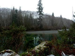 обои Первый снeг у реки фото
