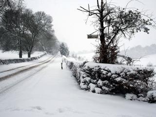 обои Дорога зимой и надпись на деревe фото