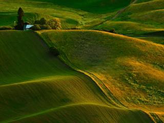 обои Красивая зелeнь холмов фото
