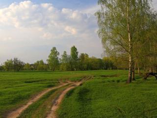 обои Дорога в майский вечер фото