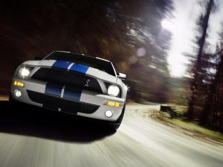 обои Ford Shelby GT500 white фото