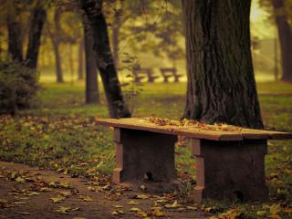 обои Осенняя лавoчка в парке фото