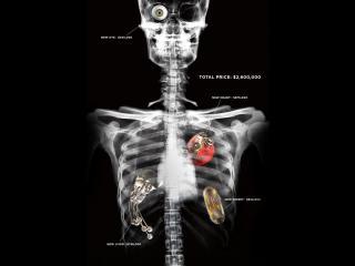 обои Скелет с ценой на органы фото