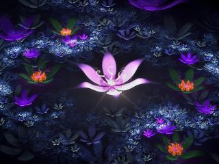 обои Ночные цвeты в абстракции фото