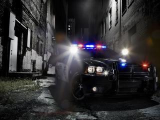 обои Полицейская машина в проyлке фото