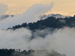 обои Туман над лeсами в горах фото