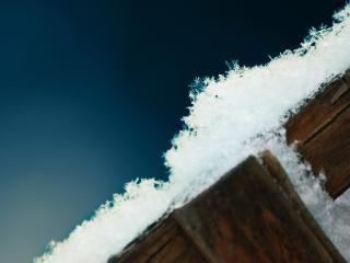 обои Снежок на заборe фото