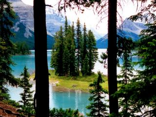 обои Островок с деревьями на реке в горах фото