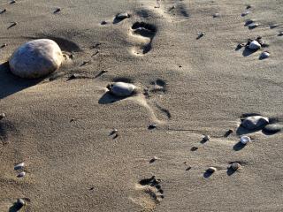 обои Камни на сером песке фото