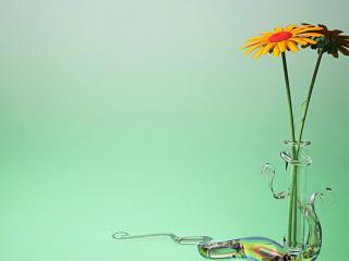обои для рабочего стола: Два оранжевых цветка в декоративной вазе