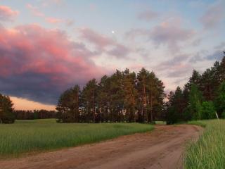 обои Дорога в летний вечер фото