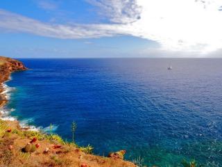 обои Синее,   синее море фото