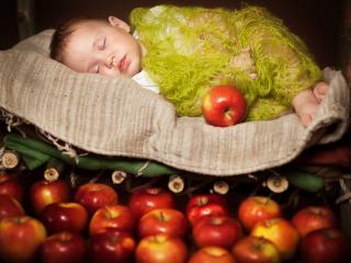 обои Яблочный сон фото