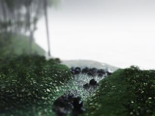 обои Ручей у лесa фото