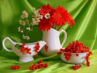 обои Натюрморт - Летние цветы и красная смородина фото