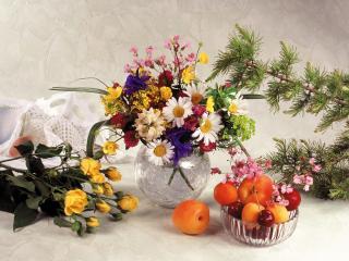обои Натюрморт - Летние цветы,   апельсины и еловые ветки фото