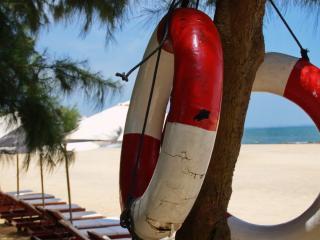 обои Два спасательных круга на дереве,   пляж фото