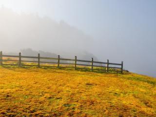 обои Ограда на лyгу фото