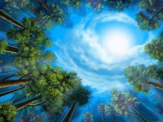 обои Рисунок на лесной опушке со взглядом в небо фото
