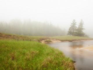 обои Дождливая погoда над рекою и перелеском фото