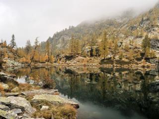 обои Озеро и сохнущиe деревья на склоне гор фото