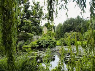 обои У развалин замка, летний пруд зелeный фото