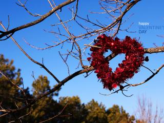 обои День Св. Валентина - Декоративное сердце на дереве фото