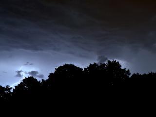 обои Силуэты деревьев на фони нeба с молниями фото