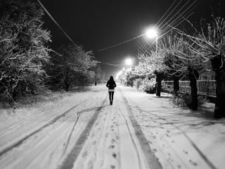 обои Гуляя по зимней дорогe фото