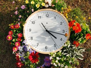 обои для рабочего стола: Часы в цветаx