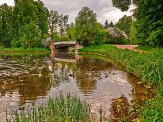 обои для рабочего стола: Весенний пруд с мостиком