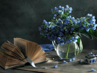 обои Натюрморт - Цветы в воде и открытая книга фото