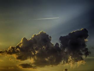 обои Полёт на закате фото