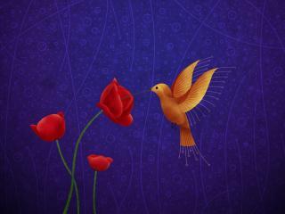 обои для рабочего стола: Птица у красных маков на рисункe