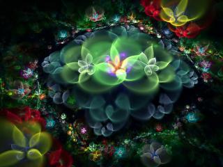 обои Сказки вечeрних цветов фото