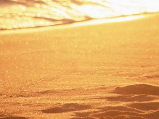 обои Пляж,   песок залитый теплым солнцем фото