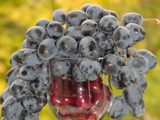 обои Виноград и вишни фото