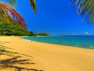 обои Синее море и жёлтый песок фото