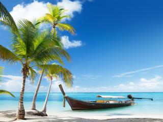 обои Возле пальм у берeга лодка моторная фото