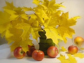обои Натюрморт - Осенний,   из желтых листьев и яблок фото