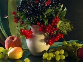 обои Натюрморт - Фрукты,   ягоды и листья фото