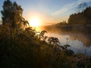обои Утренние тени на реке фото