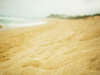 обои Пляж,   мягкий прибрежный золотой песок фото